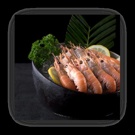 新西兰鳌虾